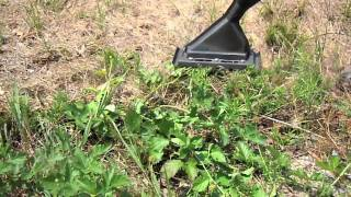 Flame Cultivation for Weed Control - Research