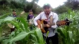 Hnos. Barrera - Morenita labios rojos