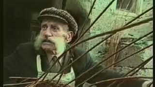 История кубанских казаков, украинцев