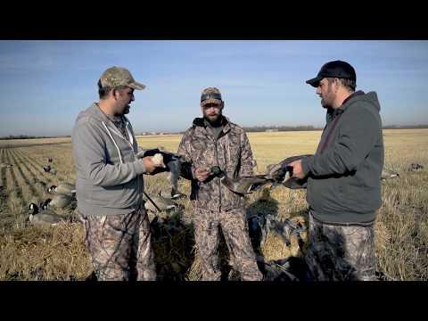 Waterfowl Hunting for Diver Ducks, Snow Geese, Canada Geese and Mallards