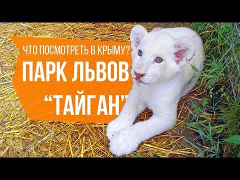 Парк львов 'Тайган'