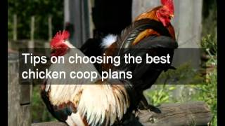Cheap Trusted Plans For Chicken Coops | Easy To Build Multiple Designs & Plans For Chicken Coops