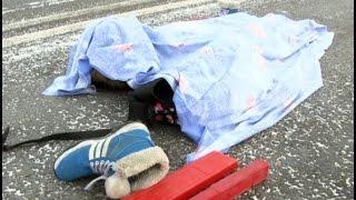 Девятилетняя девочка погибла на пешеходном переходе под Хабаровском .MestoproTV