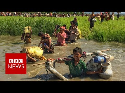 Rohingya crisis: the world's fastest growing humanitarian crisis- BBC News