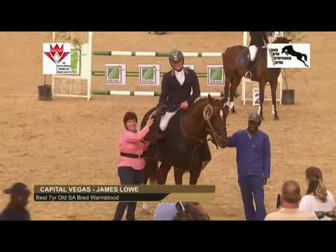 The Young Horse Performance Series: The Series Final will be live streamed on this channel,  on t...