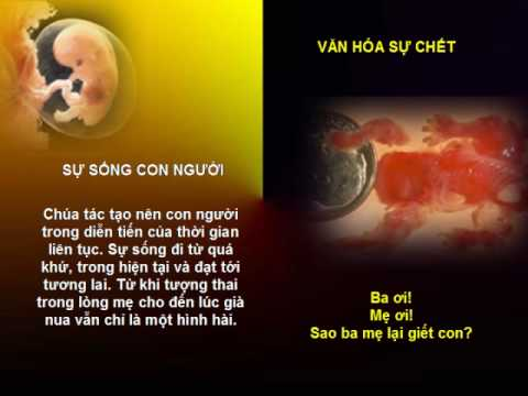 Thai Nhi Nao Co Toi Gi? (Oct 2009)