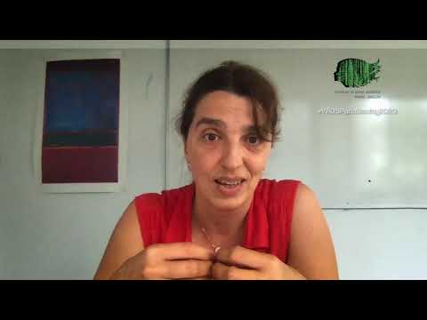 WiDS Paris-Saclay 2020 | Ep 05 Ioana Manolescu