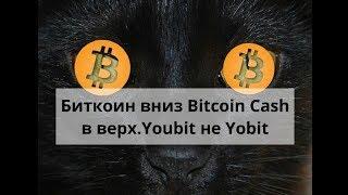 Биткоин вниз Bitcoin Cash в верх. Youbit не Yobit