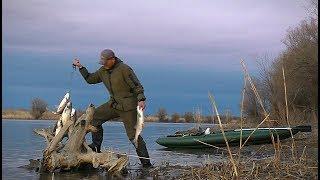 ЭТУ РЫБАЛКУ ЖДЕШЬ ВСЮ ЗИМУ. Весна Река Лодка. Мощные поклёвки на спиннинг.