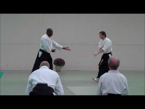 Institute of Aikido Summer School 2017