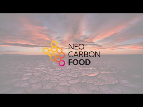 Food from electricity – Neo-Carbon Food