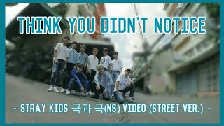 Things you didn't notice Stray Kids 극과 극(NS) Video (Street Ver.)