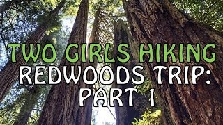 Redwoods Trip Part One: Jedediah State Park, Trees of Mystery, Fern Canyon | Two Girls Hiking