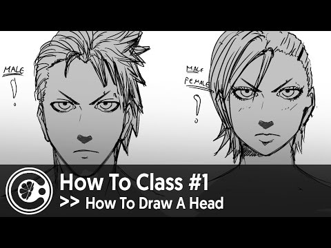 How To Class #1 How To Draw A Head