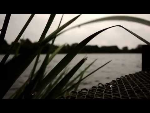 Darrell Peck - Carp Fishing Day Ticket Success