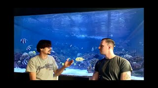 GERMAN REEF TANKS - private 24.000 liters aquarium (6300 gallon) saltwater tank - #tour #aquarium