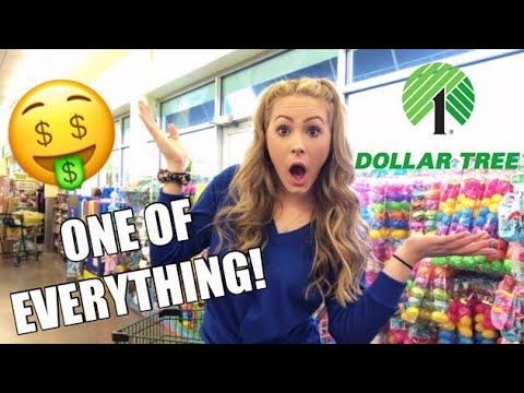 I BOUGHT ONE THING FROM EACH AISLE AT DOLLAR TREE!