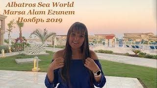 Albatros Sea World Marsa Alam Египет Ноябрь 2019 Плюсы и минусы отеля