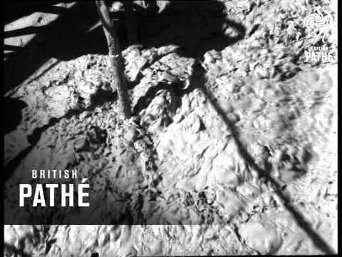 Gold Mining Methods  (1961)