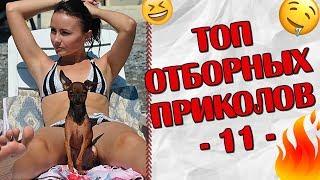 ПРИКОЛЫ 2019 Топ Отборных Приколов #11 Ржака Юмор Угар Joke Humor