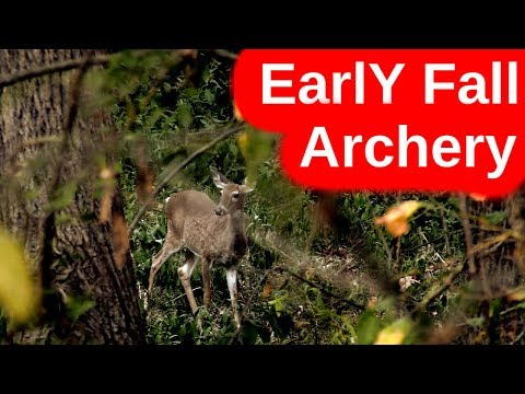 Early October Archery- Searching For New Bucks