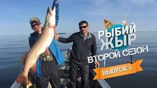 видео 9 карпов рыбалка русфишинг