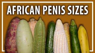 Video Average African Penis Sizes download MP3, 3GP, MP4, WEBM, AVI, FLV September 2018