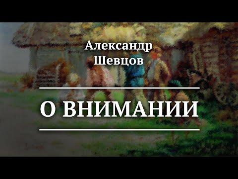 О Внимании. Йога | Александр Шевцов