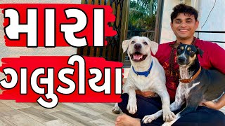 મારા ગલુડીયા । Khajur Bhai VLOGS | Jigli and Khajur Vlogs |Travel Vlogger |Gujarati VLOG |Nitin Jani