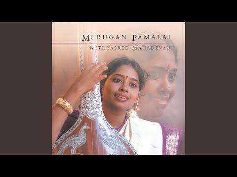Mayil Meedhu