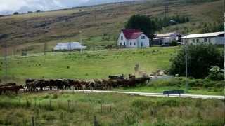 Guesthouset Hrafnagil in Eyjafjarðarsveit Iceland - Icelandic Farm Holidays