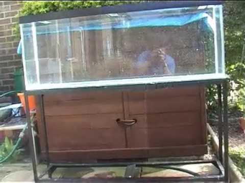 The leaking fish tank youtube for How to fix a leaking fish tank