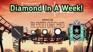 Getting Diamond Xbox Diamond Ranked Highlights Rainbow Six Siege Gameplay