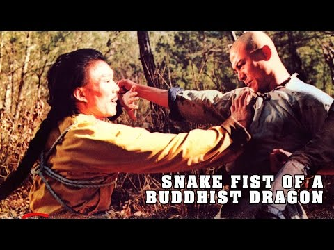 Wu Tang Collection  Snake Fist of a Buddhist Dragon