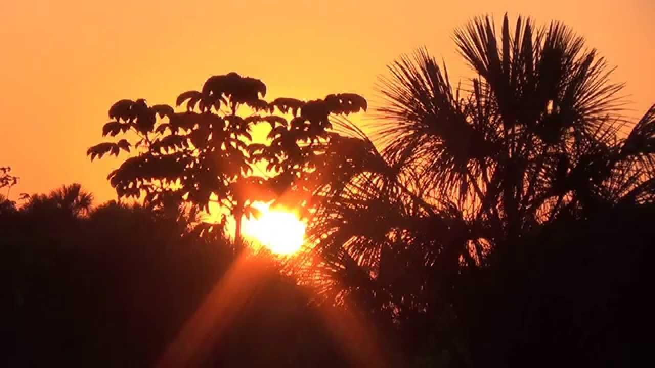 Sons de pássaros ao amanhecer, Coisas da roça, Cores da Natureza,