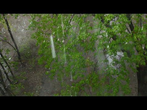 НУ И ПОГОДА: Погода в Когалыме. Поминутный прогноз погоды