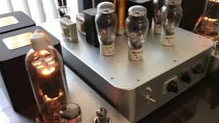 Audio Physic Virgo III Speaker