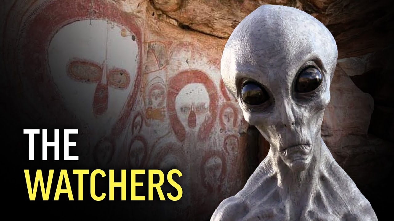 Where Did Humans REALLY Come From?!  Paul Wallis, Steven & Evan Strong