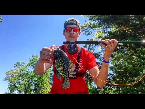 Beginner Fly Fishing (Bluegill Crappie and Largemouth)