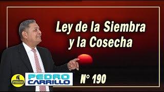 N° 190
