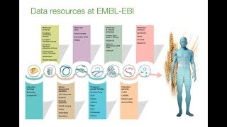 Gambar cover Introduction to EMBL-EBI Resources