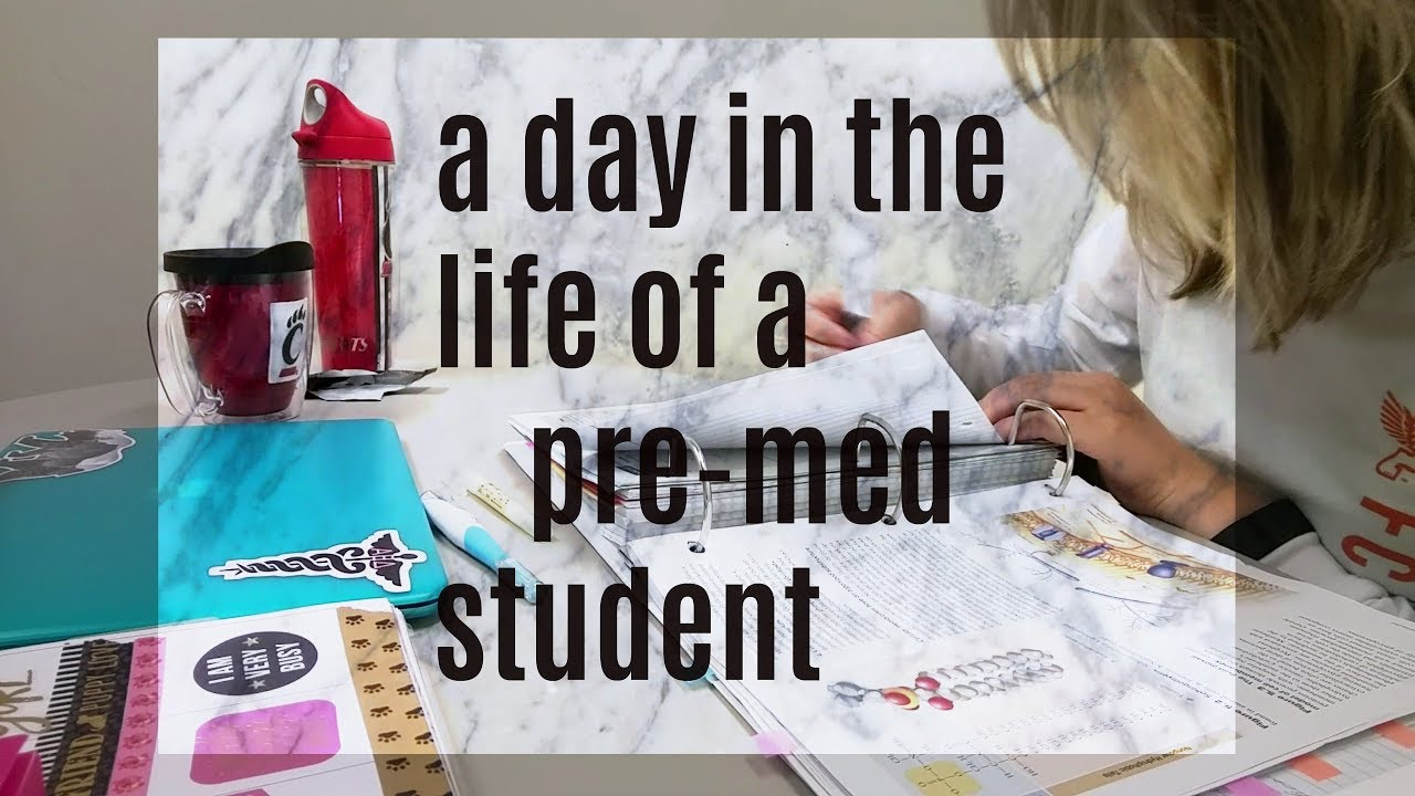 a day in the life of a college student essay First of all, when you study at college or university, you need a lot of money school fees and books are very costly and if you need an apartment, it is even more expensive for example, according to the meq, it costs about 1668.