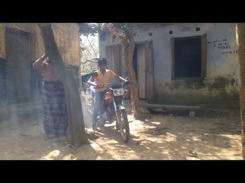 Bike crushed on tree (CD80)