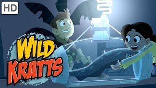 Wild Kratts - Best Season 4 Moments! (Part 3/6) | Kids Videos