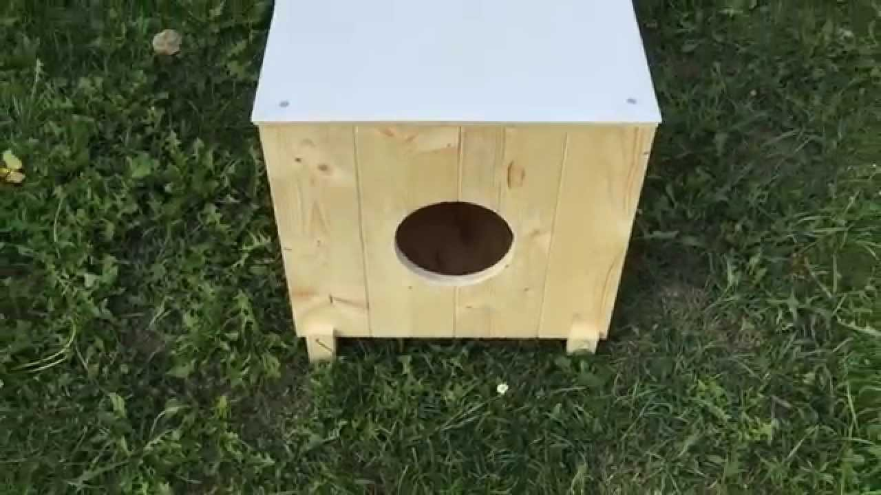 Casetta per gatti anacleta youtube for Cucce per gatti da esterno riscaldate