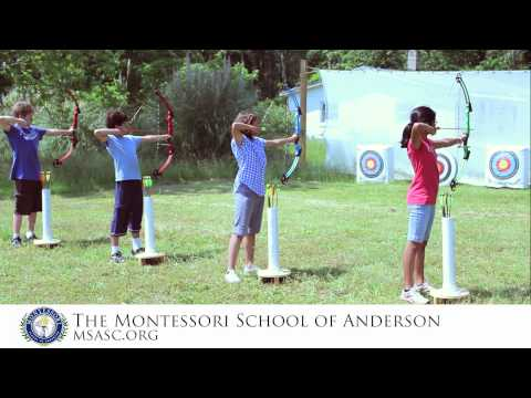 The Montessori School of Anderson