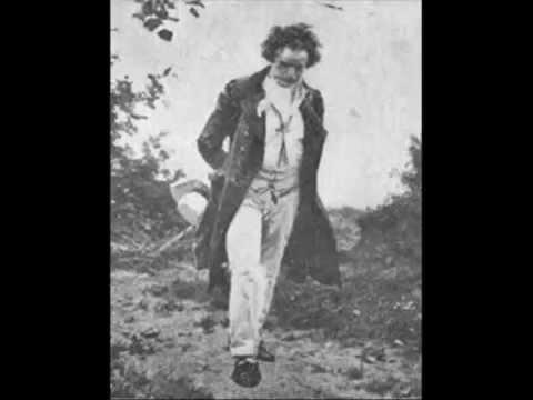 L. V. Beethoven - Symphony No. 2 in D major (Op. 36)