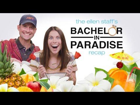 The Ellen Staff's 'Bachelor in Paradise' Recap: Paradise is Back!