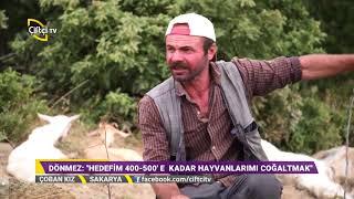 Sürü Yönetimi - Çoban Kız / Çiftçi TV