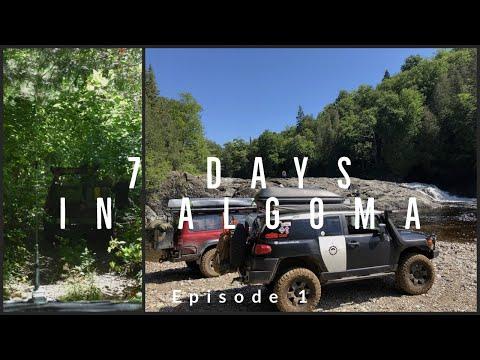7 days in